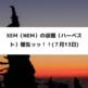 XEM(NEM)の収穫(ハーベスト)報告ッッ!!(7月13日)